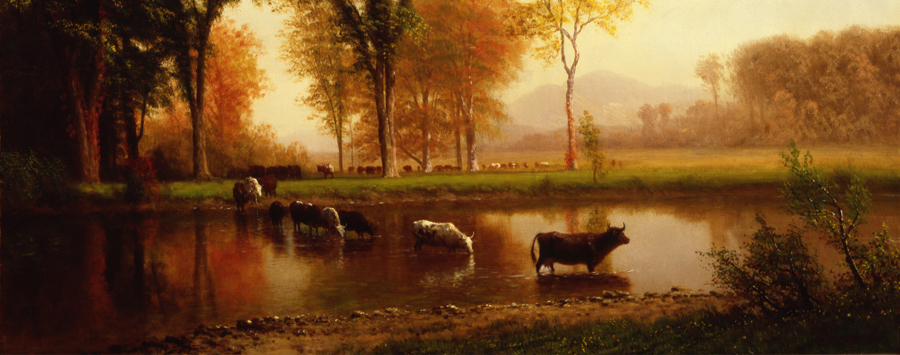Albert Bierstadt, Autumn: Cows Crossing Stream (Near Plymouth, New Hampshire), circa 1880s, Oil on canvas, Collection of the Saint Mary's College Museum of Art, Gift of Mrs. Ernest Mott; conservation sponsored by Mr. and Mrs. Valentine Brookes