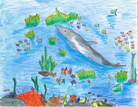 """Laura's artwork """"The Colorful Sea"""" appears to be created using pastel or colored pencil. It depicts a blue body of water, with many small colorful fish interspersed throughout the image. At the center of the page, a dolphin swims on top of the water, with several green clusters of seaweed and water grass around it. At the bottom of the page is a small, colorful coral reef with many red, yellow, purple, and pink plants and an orange starfish."""