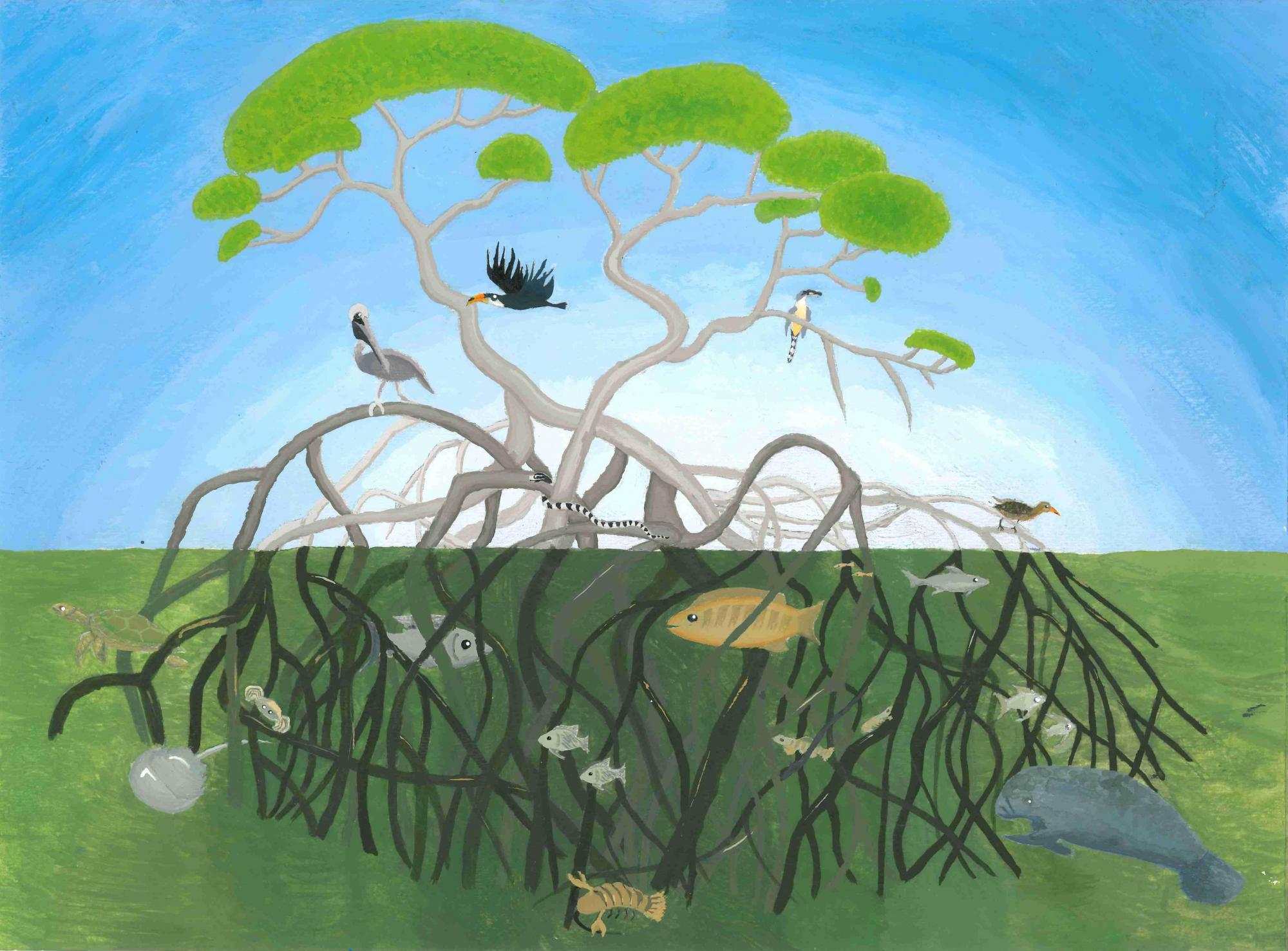 """This image is Nicole Li's artwork """"Tree of Life."""" The medium appears to be acrylic paint or pastel. The background is split between a blue sky with white light at the center, and green grass on the bottom half. A large tree takes up most of the foreground. The tree is comprised of many thin curvy branches that end in clusters of green leaves on top, and deep roots that sink into the grass but remain visible. In the grass, among the roots, are painted fish of various sizes; on the top half of the tree, which touches the sky, are several birds perching in the branches, one flying, and a snake coiled around a branch."""
