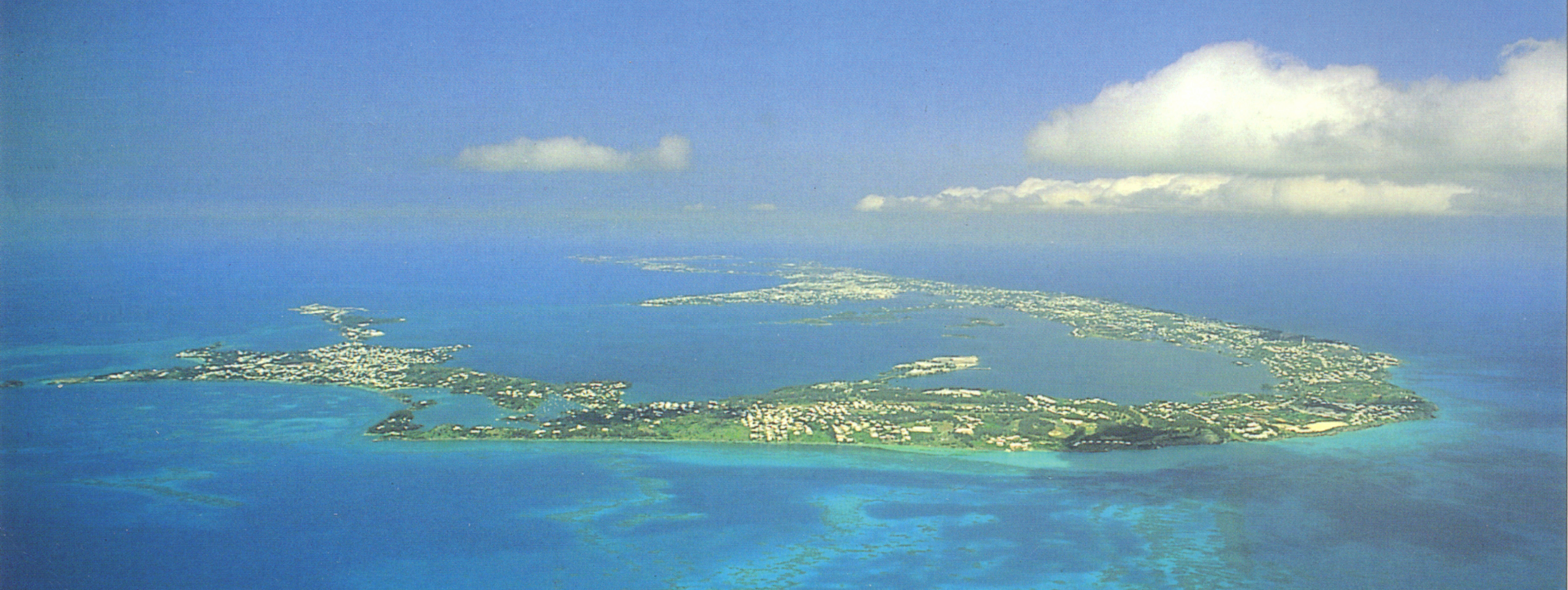 about bermuda