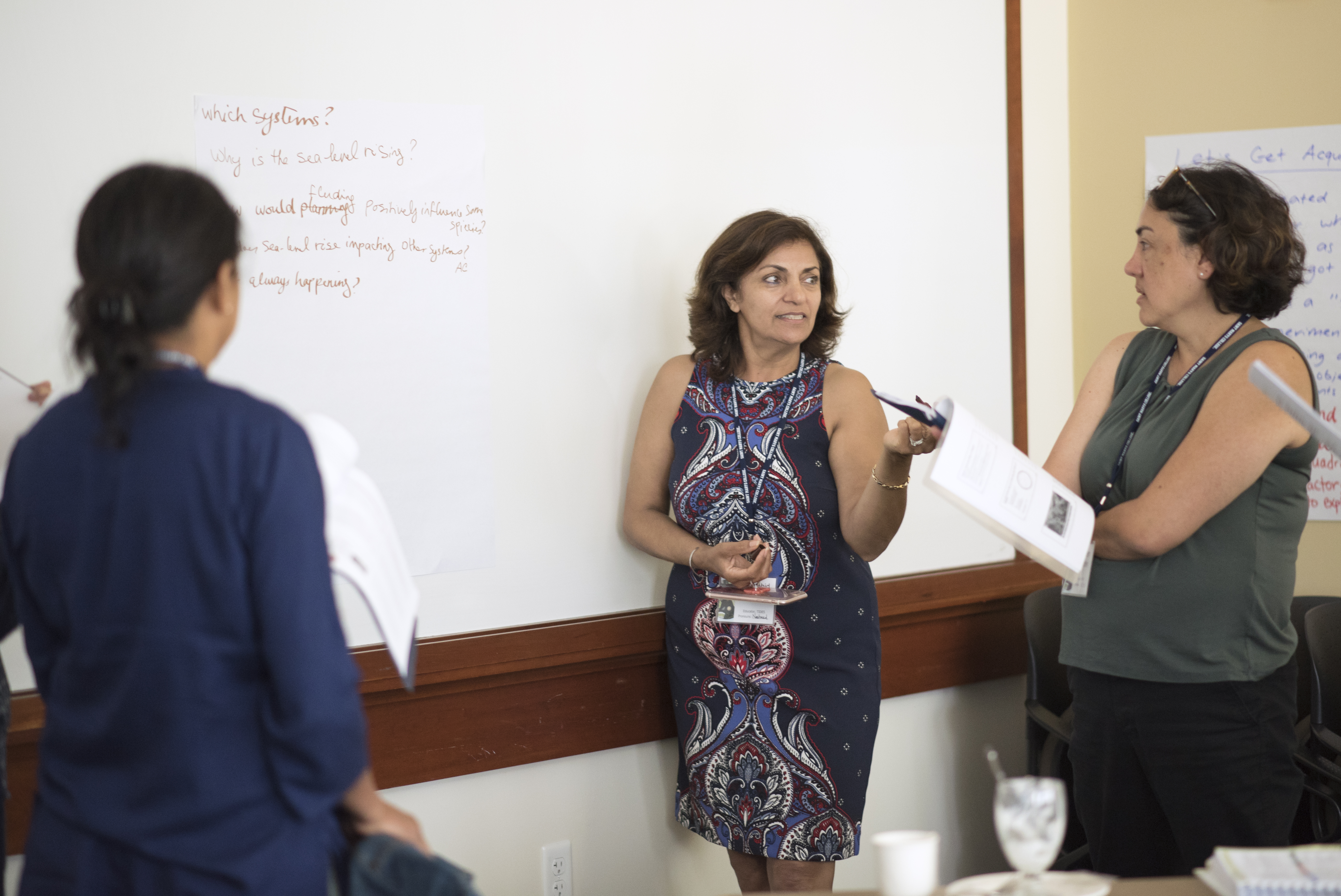 Features Nahid Nariman, specialist fromTIDES(Transformative Inquiry Design for Effective Schools and System), at the 2019 CEL Summer CO-LAB at Saint Mary's College of California: July 26-28th, 2019. Photography by Maureen Esty and Haley Nelson