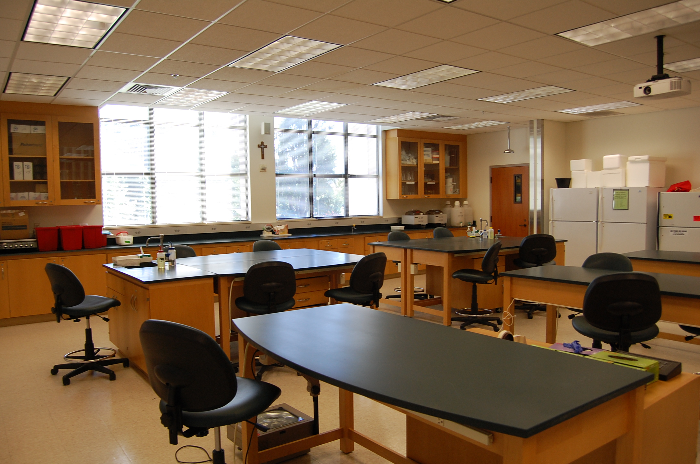 Teacher view of Brousseau 229