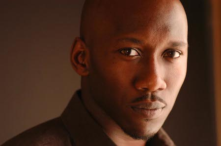 "Mahershala Ali stars in ""House of Cards"" and ""The Hunger Games: Mockingjay - Part 1."""