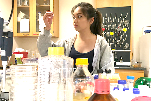 Lexi Luong performing science research at SMC