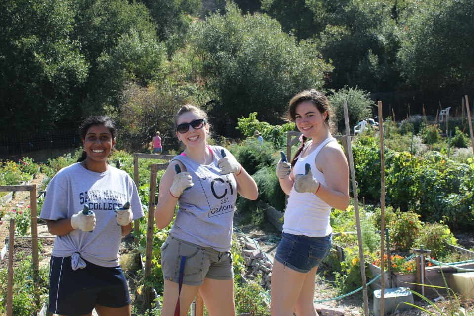 Members of the Green LLC enjoy the year's first Garden Day in the Legacy Garden.