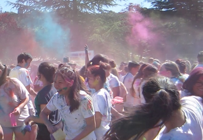 Holi Colors in Action