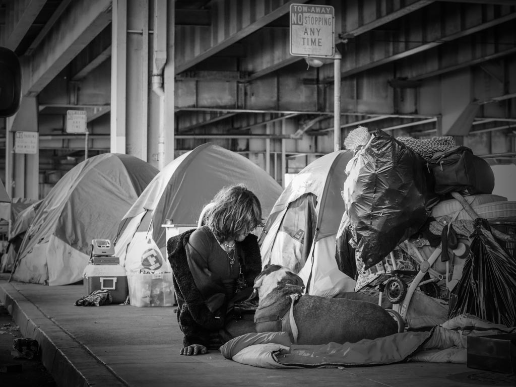 Homeless woman with dog next to tents.
