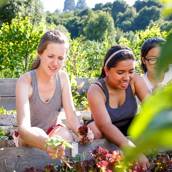 Women working in the Legacy Garden.