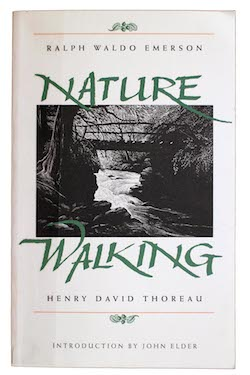 "Students read Thoreau's ""Walking"" during the final Seminar that focuses on the great writers and thinkers of the 19th and 20th centuries."