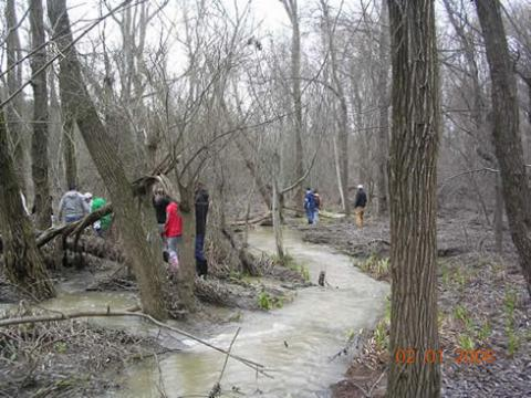 January term 2008 class carefully hiked across the SMC swamp on the last day of class. The numerous streams were flowing rapidly due to recent rains. Heavy duty rubber boots were a necessity for this year. (photo by S. Bachofer).