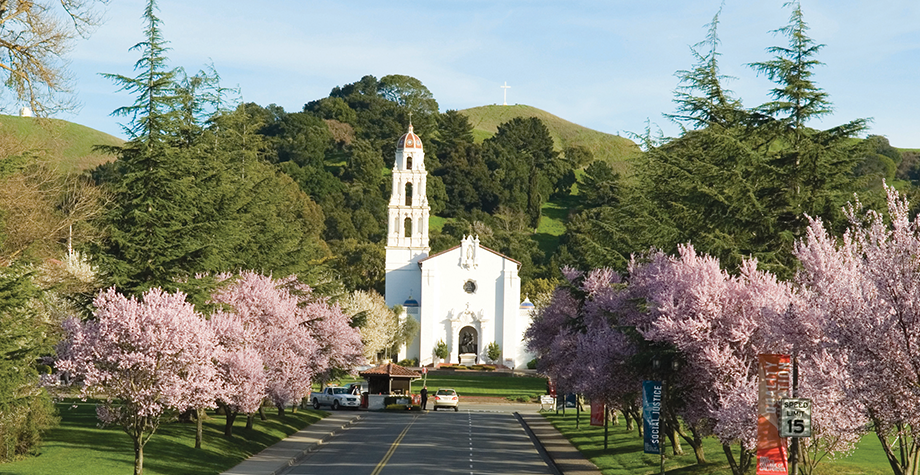 campus chapel surrounded by pink cherry blossom trees
