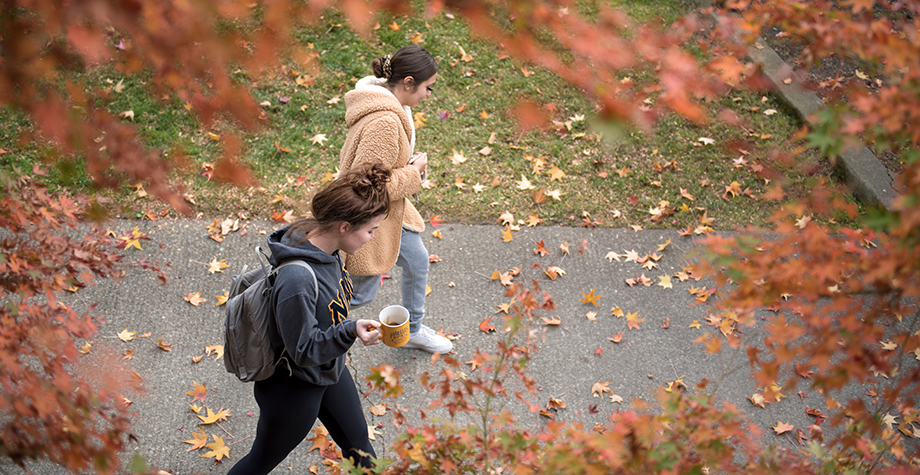 students walk on campus during the fall season