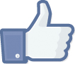 The Facebook like icon.