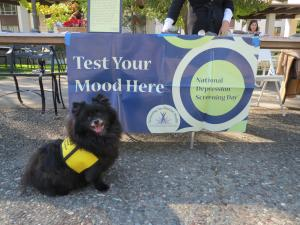 Mood screening with Oscar, the therapy dog.