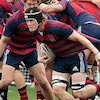 Saint Mary's Rugby