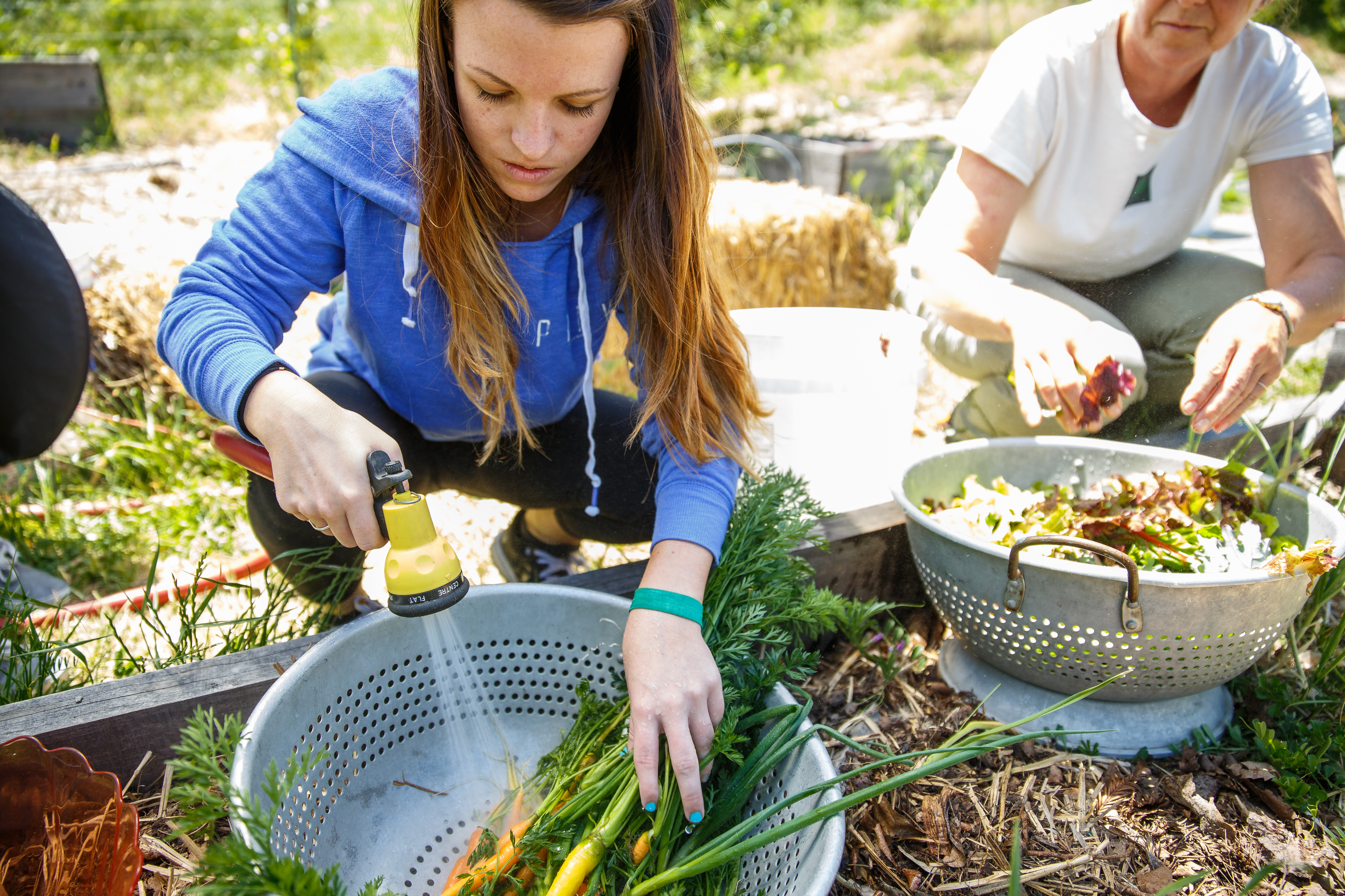 Students washing vegetables in the Legacy Garden