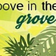 Image for Groove in the Grove