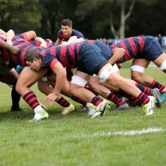 Image for Men's Rugby vs Cal Poly