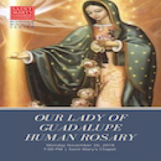 Image for Our Lady of Guadalupe Human Rosary