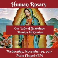 Image for Our Lady of Guadalupe Celebration Human Rosary