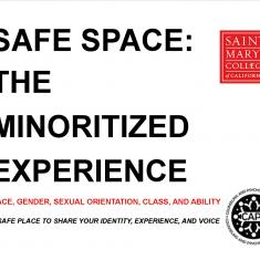 Image for Safe Space: The Minoritized Experience