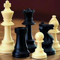 Image for Chess Meeting