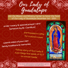 Image for Our Lady of Guadalupe