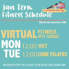 Image for Virtual Fitness Services