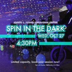 Image for Spin in the Dark