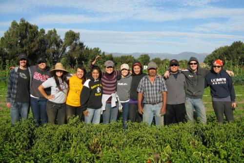 Salinas Immersion 2011