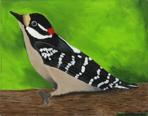 The Woodpecker, Chenyu Zhao, age 11,   New Orleans, Louisiana Lusher Charter School Teachers: Susan Ary & Beth Romaguera, 2013 River of Words Finalist