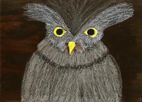 """Warrior Owl"" by Ella Csuka (10), Cumming, GA (c) 2014 River of Words"