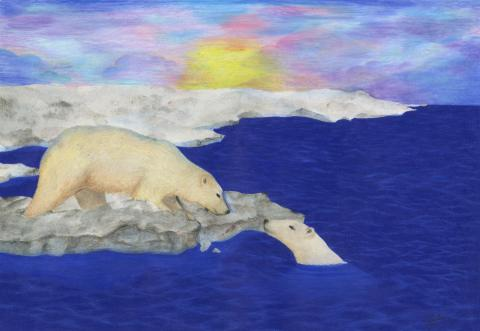 """""""Adapting to a New Environment"""" by Seoyoung Eileen Hwang (15), Coquitlam, BC, Canada (c) 2014 River of Words"""