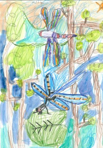 """Disturbance of the Dragonflies"" Mack Eubanks, age 6. Atlanta, Georgia. United States. Trinity School. Teacher: Lauren Kane and Nina Chamberlain. River of Words 2018 Finalist."