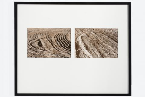 Laurie Brown, United States, 1937. Untitled, 1979. Gelatin Silver Paint Gift in memory of Susan E. Hochberg. 95.64.6