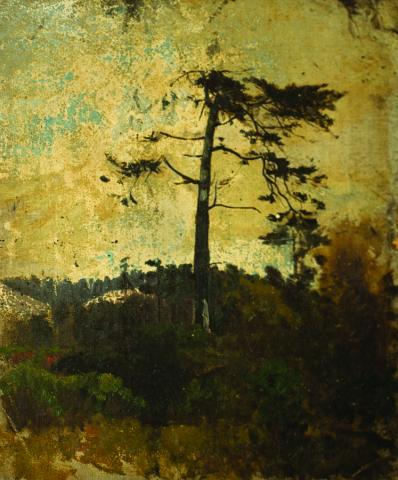 William Keith, Early Sketch - Silhouetted Evergreen, circa 1890, Oil on canvas mounted on board, 13 ¾ x 11 ¾ inches, Collection of Saint Mary's College Museum of Art,  Gift of Margaret Keane McGuire, 82.2.2