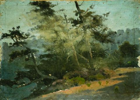 William Keith, Early Sketch - Trees on Cliff Edge, circa 1890, Oil on canvas mounted on board, 11 ¾ x 14 ¾ inches, Collection of Saint Mary's College Museum of Art,  Gift of Margaret Keane McGuire, 82.2.3