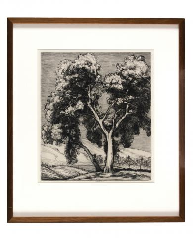 Roi Partridge (1888–1984) United States, Live Oak and Orange, 1921, Drypoint on steel faced zinc, Gift of the Edward and Claudine Horton Family [89.9.6]