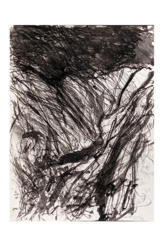 David Maxim (b. 1945) United States, Landscape, 1988, Ink and graphite on paper, serial no. 1988-20, Gift of the Artist [92.5]