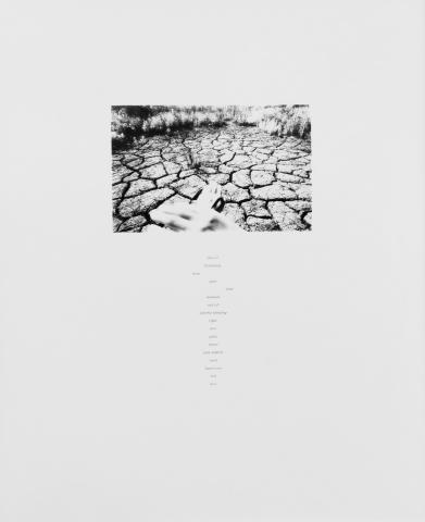 Joan Watanabe (b. 1952) United States, Untitled (Hands and Cracked Earth) 1979, Gelatin Silver print, Gift of Susan E. Hochberg [96.35.9]