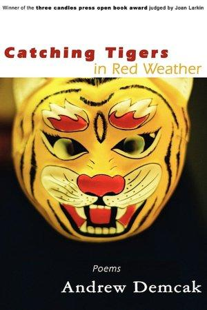 CATCHING TIGERS IN RED WEATHER BY ANDREW DEMCAK