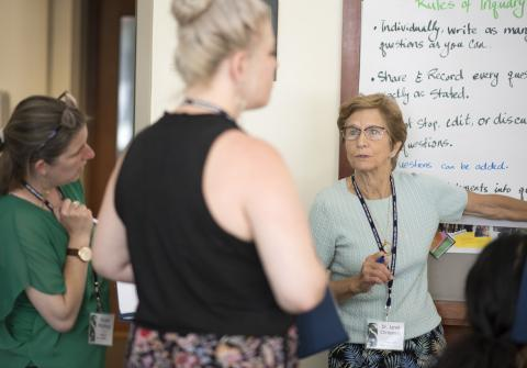 Features Janet Chrispeels, specialist from TIDES (Transformative Inquiry Design for Effective Schools and System) at the 2019 CEL Summer CO-LAB at Saint Mary's College of California: July 26-28th, 2019. Photography by Maureen Esty and Haley Nelson