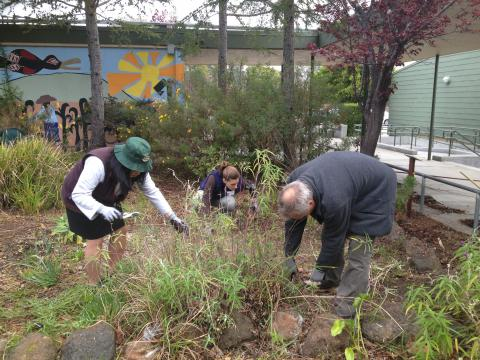 Kinesiology students and faculty hard at work at the 2013 Bay Area Schools' Service Day