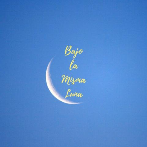"a crescent moon frames the words ""Bajo la Misma Luna"" in yellow script on a faded blue background"