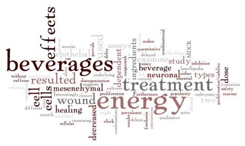 Vidya Chandrasekaran, Associate Professor Biology School of Science  Doyle, W., Shide, E., Thapa, S., & Chandrasekaran, V. (2012). The effects of energy beverages on cultured cells. Food and Chemical Toxicology, 50(10), 3759–3768. doi:10.1016/j.fct.2012.07.008