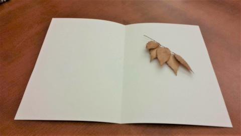On a brown wood table, a blank unlined notebook is open. On the right hand page lies a small twig with 5 autumn-browned unlobed leaves on it.