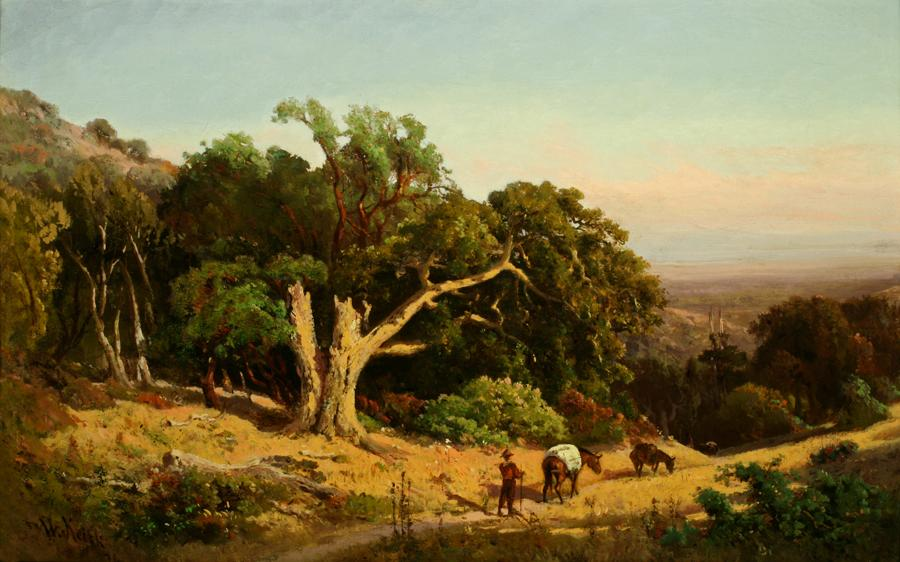 William Keith, Pacheco Pass (Landscape with Old Oak), 1874, Oil on canvas mounted on board, 14 ¾ x 24 inches, Collection of Saint Mary's College Museum of Art, Gift of Ansel and Virginia Adams, 0-6