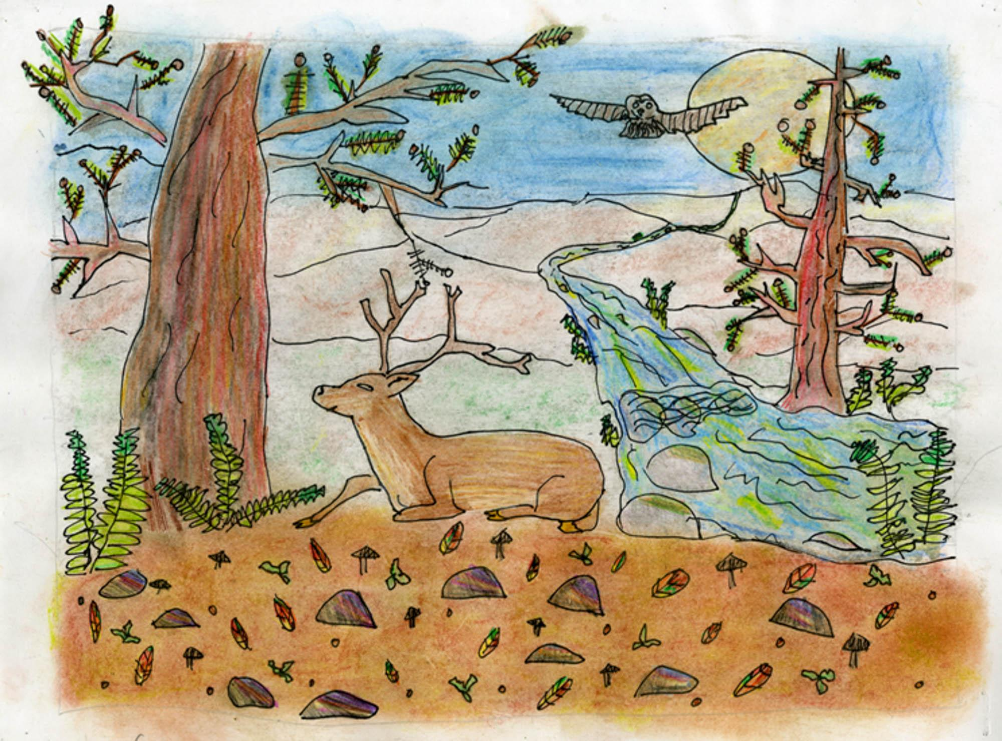 Resting Deer, Leslie Garcia, age 8 Watsonville, California Linscott Charter School Teacher: Linda Cover, 2013 River of Words Finalist