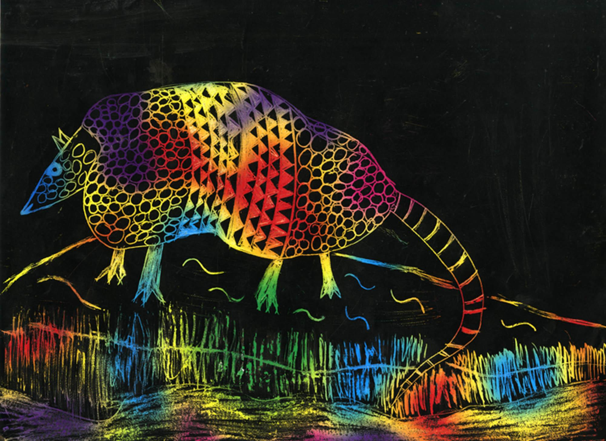 River of an Armadillo, Louisa Hanson, age 8 Atlanta, Georgia Cliff Valley School Teacher: Kathy Peters, 2013 River of Words Finalist