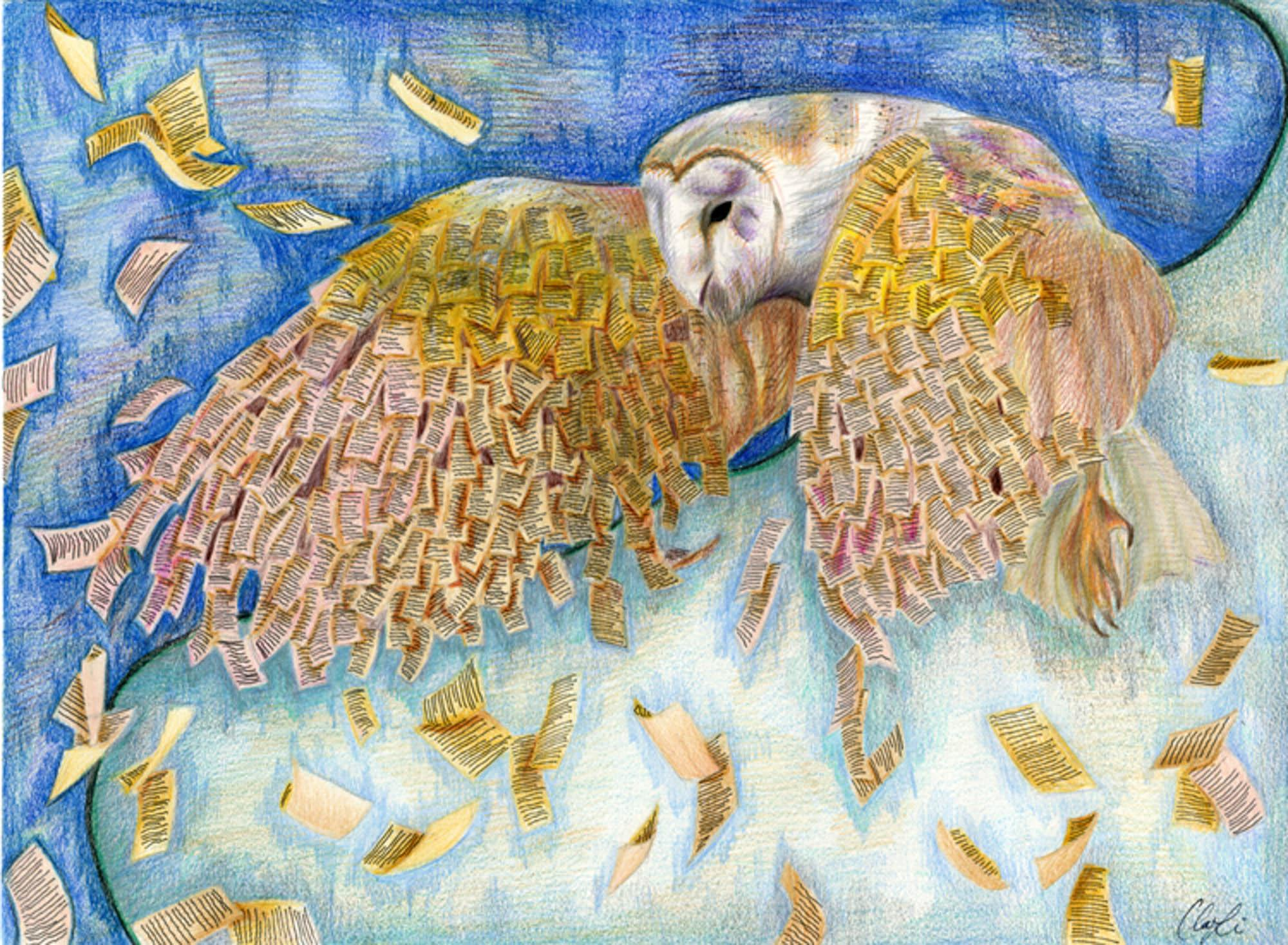Wisdom Soars, Claudia Li, age 16 Santa Clara, California (Submitted Independently), 2013 River of Words Art Grand Prize Winner, Category IV